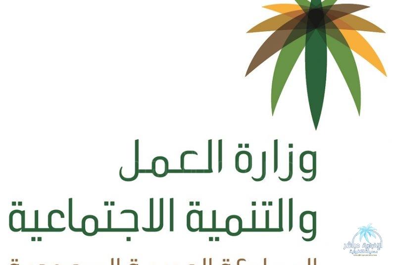 وزارة التعليم تدعو الخريجين والخريجات لشغل 831 من الوظائف التعليمية
