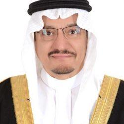مهرجان الملك عبدالعزيز للصقور يدشن متحفًا ومعرضًا للزائرين