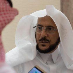 التحالف يوجه ضربات نوعية على أهداف ميليشيا الحوثي بمديرية كشر