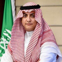 """""""السيسي"""" يعرب عن تضامنه مع السعودية والإمارات للتصدي لكل محاولات النيل من استقرار البلدين"""
