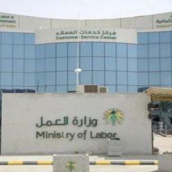 التأمينات: حملات تفتيش تكشف عدداً من العاملين السعوديين بالقطاع الخاص غير مسجلين