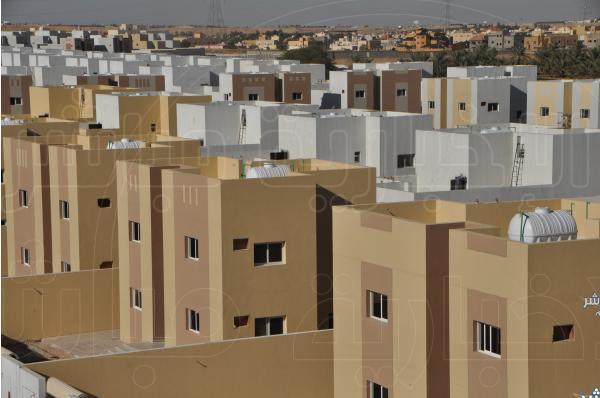 الزكاة والدخل تضبط 187 مخالفة في المدارس الأهلية ومعاهد التدريب