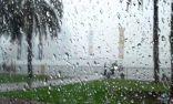 """""""الأرصاد"""" : أمطار متفرقة وموجة باردة على 5 مناطق بالمملكة"""