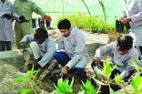 بدء فعاليات الموسم الرابع لبرنامج التدريب الزراعي لذوي الإعاقة البسيطة بالأحساء
