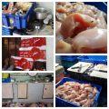 بالصور .. في #الأحساء : ضبط مصنع لتسييح الدجاج .. قذارة وإستهتار بأروح البشر !!