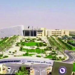 #شرطة_الرياض : القبض على 8 متهمين بينهم امرأة لتورطهم بجرائم سرقة